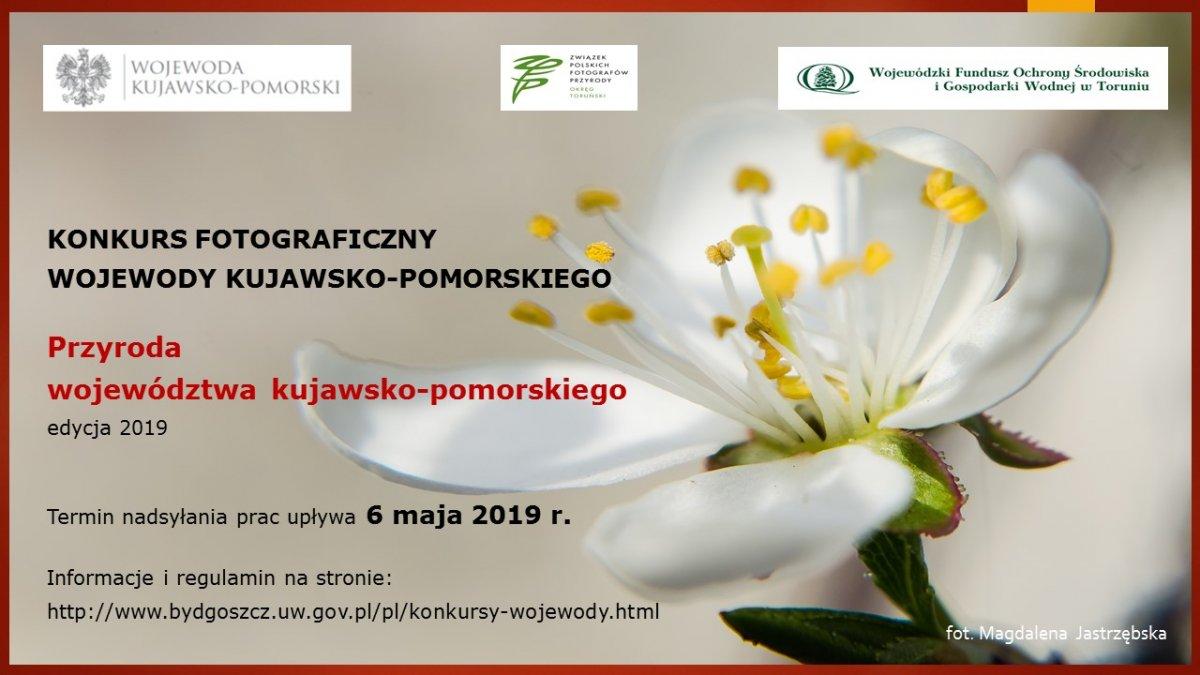 Przyroda województwa kujawko-pomorskiego - konkurs fotograficzny