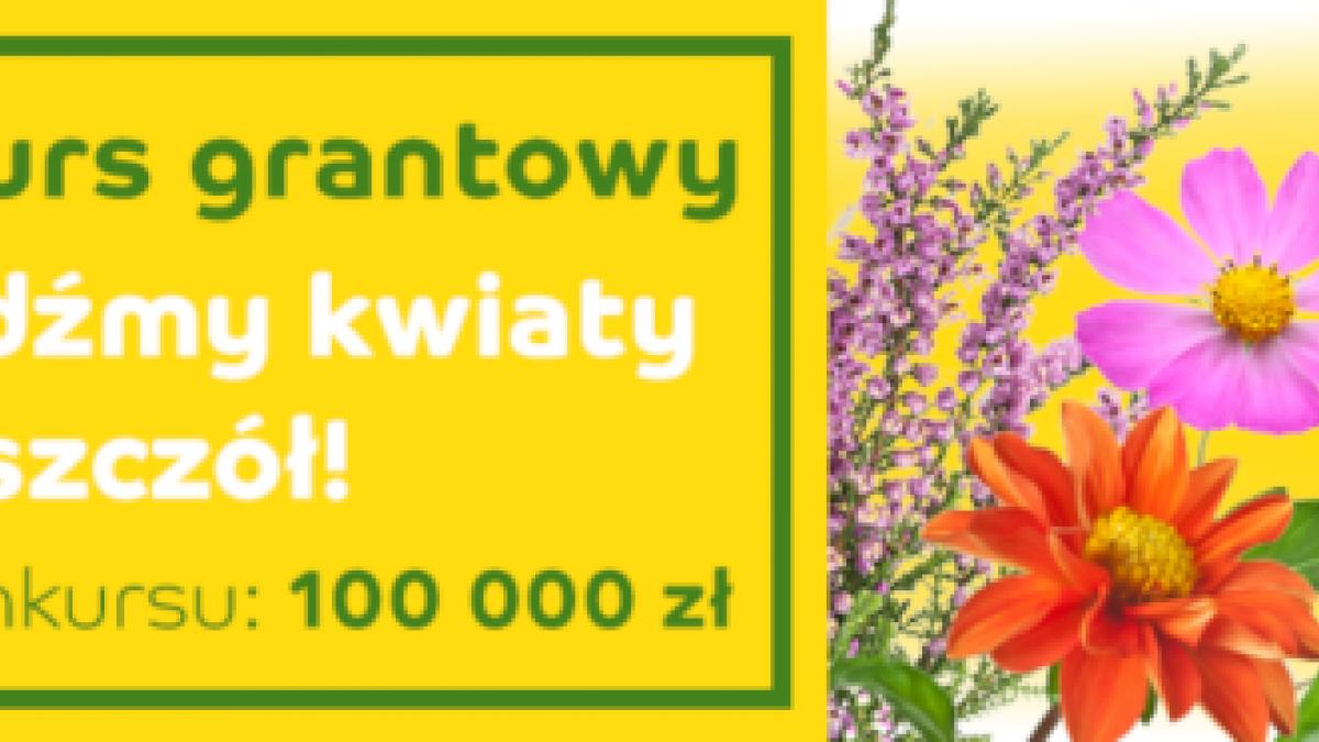 """Konkurs grantowy """" Z Kujawskim pomagamy pszczołom"""""""